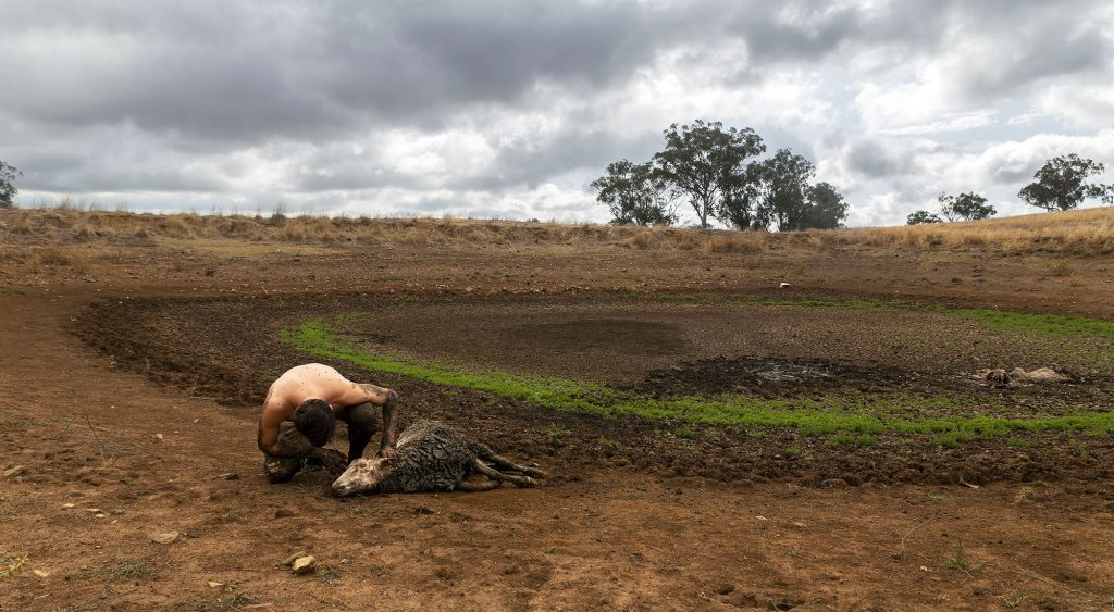 تخریب زیستگاه ها