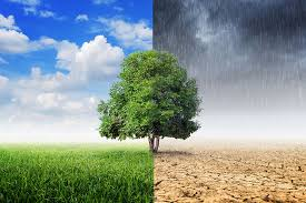 پیش بینی آب و هوا