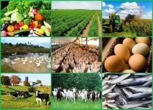 کشاورزی گوناگون