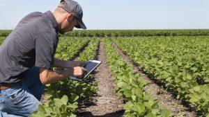 کاربرد حسگرها در کشاورزی دقیق