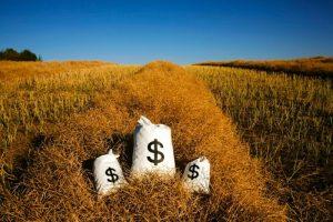 نفش محصول در توسعه اقتصادی صنعت کشاورزی