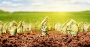 سرمایه کشاورزی