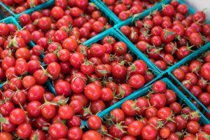 چیذن گوجه فرنگی ها