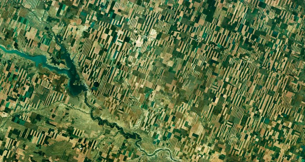 تصاویر ماهواره ای برای سنجش از دور مزرعه گندم