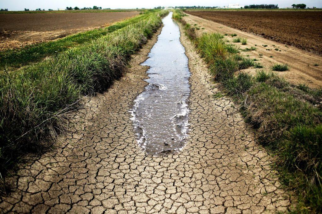 خشکسالی در کشاورزی