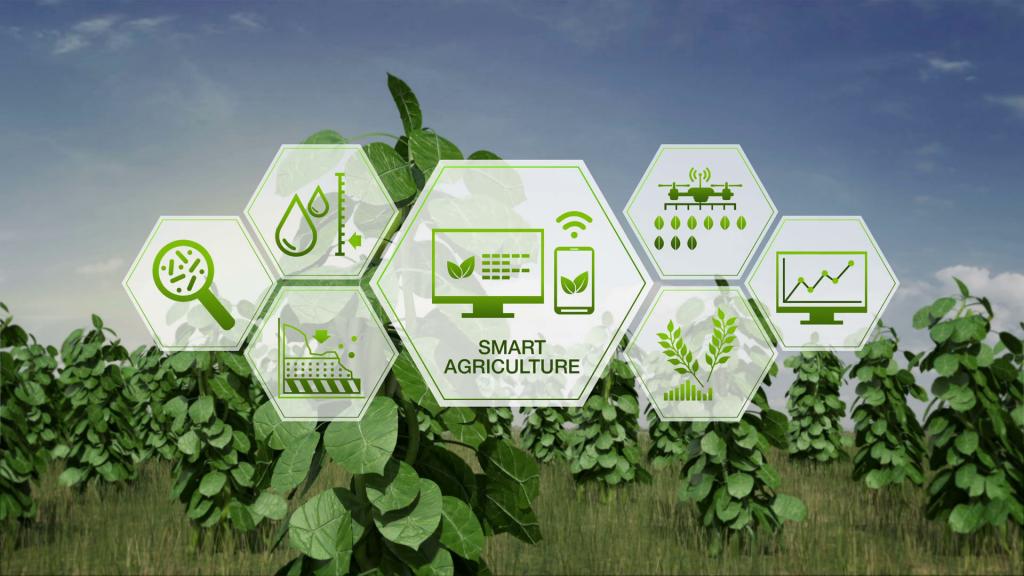 کشاورزی هوشمند چیست