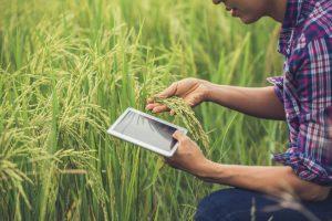 کشاورزی دقیق با بهره گیری از IoT