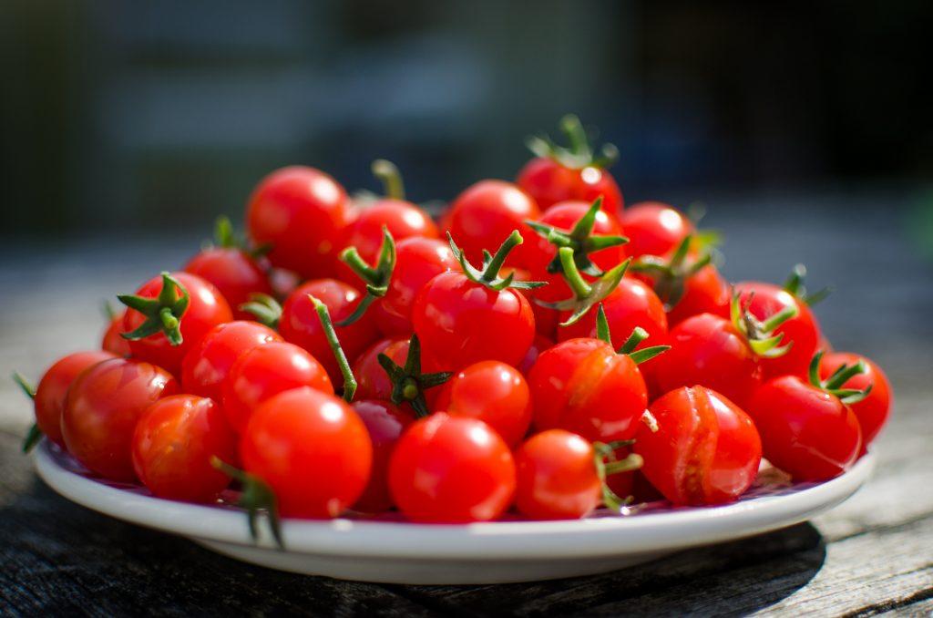 معرفی ارقام گوجه فرنگی