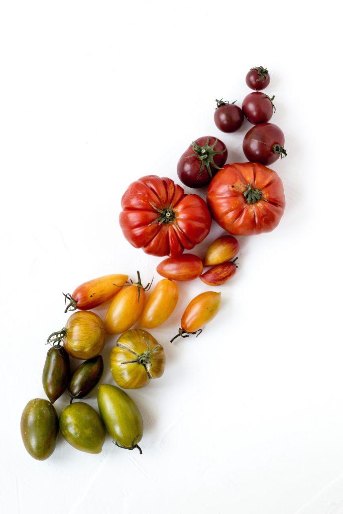 ارقام گوناگون گوجه فرنگی